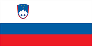 English to Slovenian Translation Services