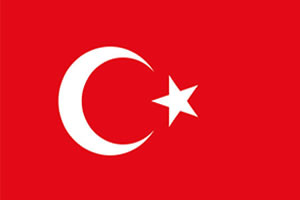 English to Turkish Translation Services
